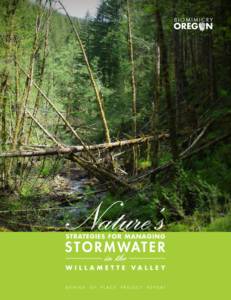 Stormwater Genius of Place Project Summary Report - COVER
